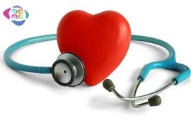 Acil Durumlarda Veteriner Hekime Yardımcı Olmak İçin